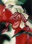 Red Orchid, ©2000, MCBozzoli